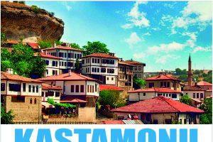 Serdar Taştanoğlu Kastamonu