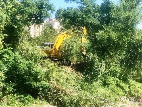 CHP'li Belediye villalara yol yapmak için binlerce canlının evini başına yıktı