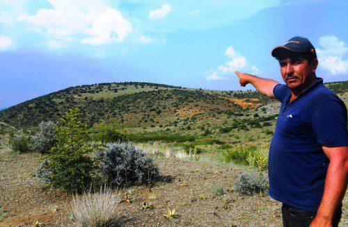 Mahkeme 187 bin ağacı kesilmekten kurtardı!