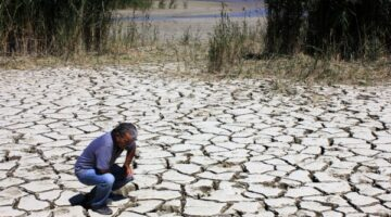 Dünya Su Günü öncesi sulak alanlar yapılaşmaya açıldı!