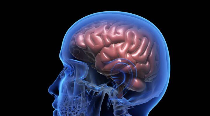 Epilepsi hakkında merak edilenler Dr.Sinan İbiş ile Güzel Hayat'ta…